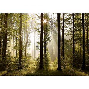 Vlies Fototapete 'Wald' 352×250 cm – 9010011a RUNA Tapete