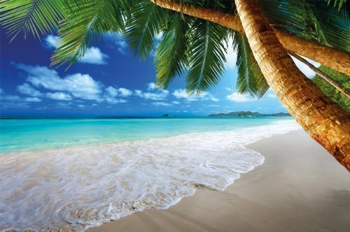 Fototapete Karibik Sandstrand mit Palmen und Meer Wand-dekoration - Wandbild Strand Poster-Motiv by GREAT ART (210 x 140 cm)