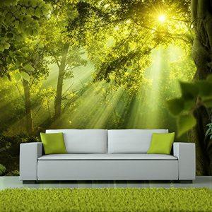Vlies Fototapete 250×175 cm ! Top – Tapete – Wandbilder XXL – Wandbild – Bild – Fototapeten – Tapeten – Wandtapete – Wand – Wald Natur Landschaft c-A-0077-a-a
