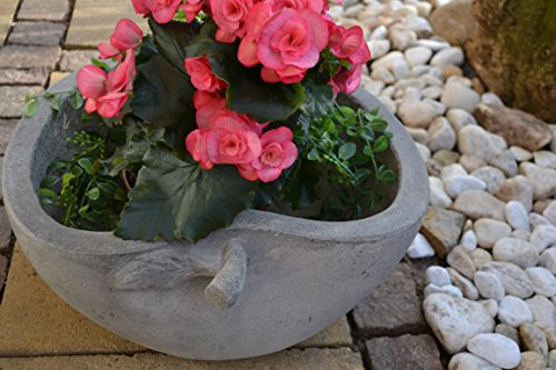 Pflanztopf - Pflanzschale Terracotta - Blumenschale für Haus und Garten, robuste Ausführung