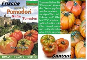 35x Pomodori Tomaten Marinda ITALIA Samen Pflanze Rarität Garten Saatgut Gemüse essbar Neuheit #120