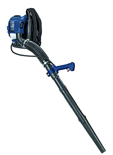 Einhell Benzin Rücken Laubbläser BG-PB 33 (0,9 kW, 1,2 PS, bis 250 km/h, Tragegurt, alle Bedienelemente im Handgriff)