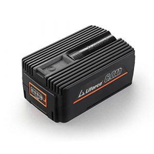 Redback 40V 6Ah Akku Batterie EP60 Samsung Lithium Ionen Liforce Batteriezellen – extrem belastbar bei geringstem Energieverlust; Kapazität: 6.0Ah (240Wh); Kein Ladeverlust bei längerer Nicht-Nutzung!