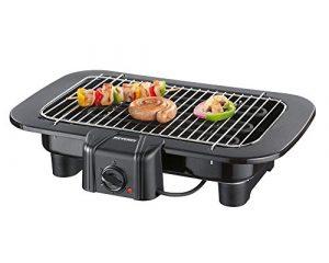 Severin PG 8529 Barbecue-Grill inklusive Eiswürfelform aus Silikon (Zertifiziert und Generalüberholt)