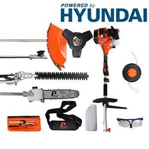 P1PE P5200MT 52cc mit Hyundai-Garten multi-Funktion, Orange