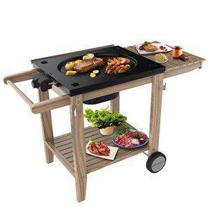 Raclette Grill Barbecue Smoker Holz-Ablagen Elektrischer – Grillfläche Luxus Grillwagen Holzkohle, Standfuß mit Rädern, mit Grillplatte, 2200W